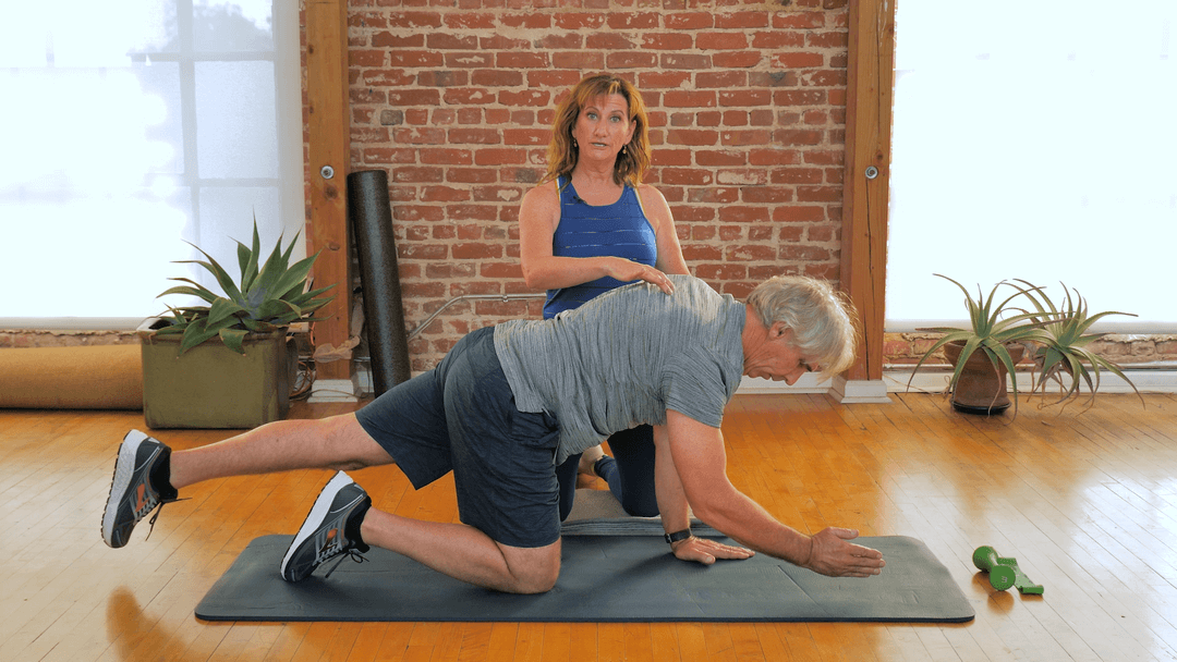 Wysefit Back Health and Core Stability Program